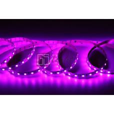 Открытая светодиодная лента SMD 5050 60LED/m IP20 12V Pink